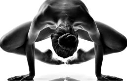 crow pose yoga & bjj